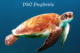 PSO PayScale