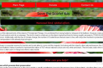 Save the Scarlet Ibises