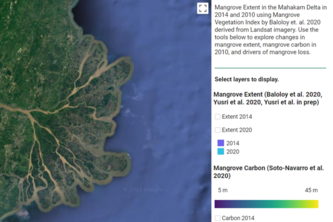 Mangrove: Mangrove carbon monitoring over time