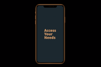 AYN (Access Your Needs)