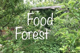 F2DB-Food Forest Database