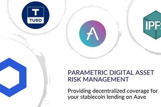 Parametric Digital Asset Risk Management