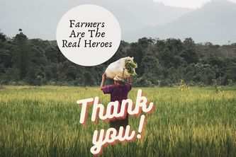 Help Farmers Save Agriculture