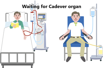 Potential cadaver organ causing event tracking on Blockchain