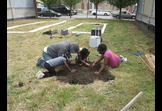 Environmental Stewardship - Power in Dirt - Revitalizing Baltimore One Vacant Lot at a Time
