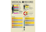 2012-esque Medical Record