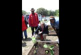 Jack Kingston and Foster Grandparent at a Community Garden