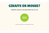 Giraffe or Mouse?