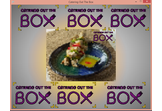 Catering Out The Box. Advanced Marketing Solutions