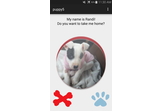 Tinder for Dogs!