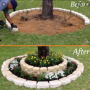 Evergreen Landscaping Experts's avatar